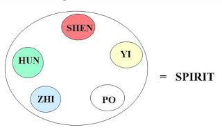 Shen3DSpirit