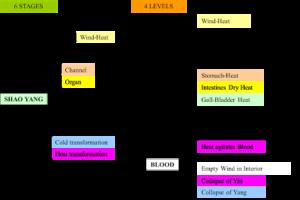 comparison-6-stages