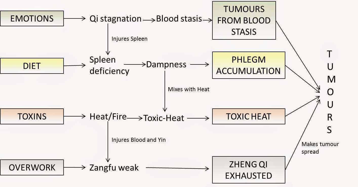 The Treatment of Cancer with Chinese Medicine