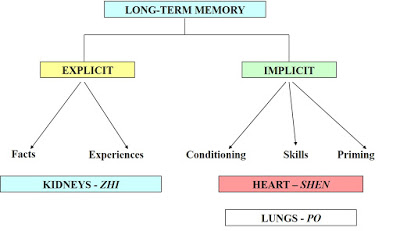 Memory in Chinese Medicine