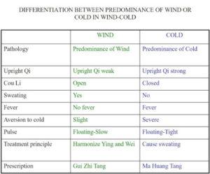DifferentiationBetweenPredominanceofWindorColdinWindColdSlide17