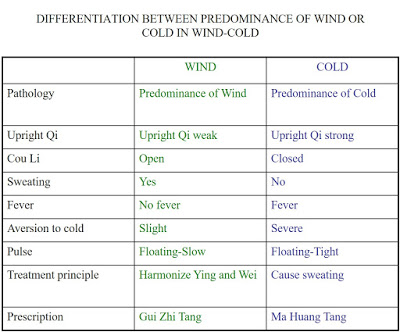 DifferentiationBetweenPredominanceofWindorColdinWindColdSlide17