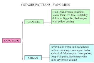 YangMingSlide24