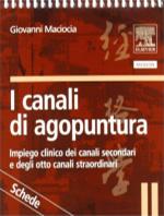 i-canali-di-agopuntura-it-2