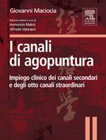 i-canali-di-agopuntura-it