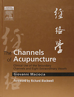 the-channels-of-acupuncture