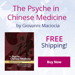 psyche_book_sidebar_ad